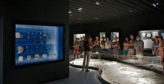 VISITE GUIDÉE : TOUT LE MUSÉE DE LODÈVE EN 1H15